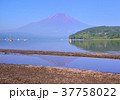 富士山 青空 逆さ富士の写真 37758022