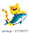 ねこ ネコ 猫のイラスト 37759777