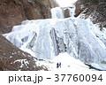 袋田の滝 氷瀑 凍結の写真 37760094