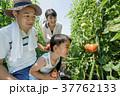 両親 男の子 笑顔の写真 37762133