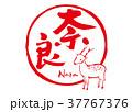 奈良 筆文字 鹿のイラスト 37767376