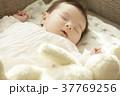 ソファで眠る赤ちゃん 37769256