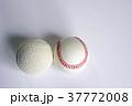 軟球と硬球 野球 37772008