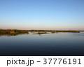 イベラ湿原 37776191