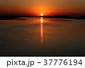 イベラ湿原 37776194