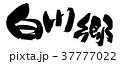 筆文字 毛筆 白川郷のイラスト 37777022