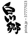 筆文字 毛筆 白川郷のイラスト 37777023