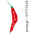 筆文字 香辛料 とうがらしのイラスト 37777416