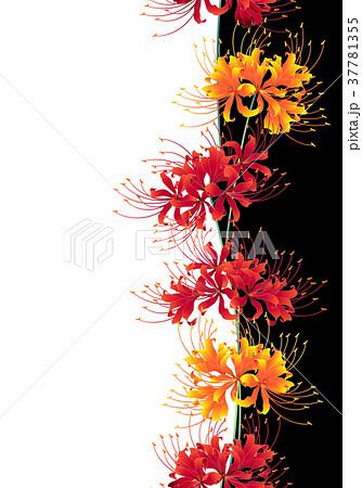 日本的な彼岸花の柄のイラスト素材 37781355 Pixta