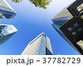 高層ビル ビル 青空の写真 37782729