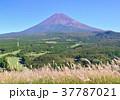 風景 自然 富士山の写真 37787021