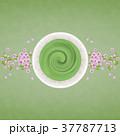 抹茶 桜 お茶のイラスト 37787713