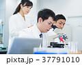 研究 研究者 顕微鏡の写真 37791010