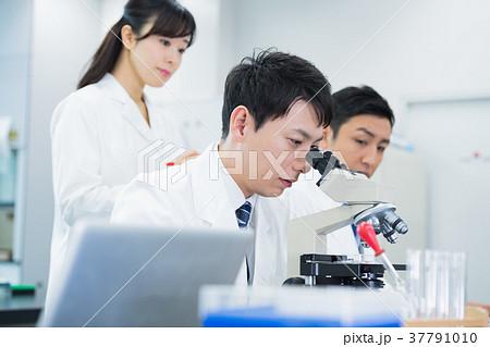 研究者、研究室、科学、実験 37791010