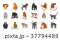 Monkey icon set, cartoon style 37794489