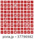 37796982
