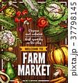 野菜 農園 ポスターのイラスト 37798145