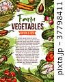 野菜 天然 自然のイラスト 37798411