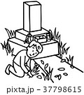 お墓 掃除 線画のイラスト 37798615