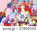 乙姫2 37800549