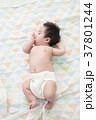 3ヶ月の赤ちゃん 37801244