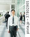 ビジネスマン ビジネス ミドルの写真 37802905