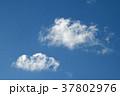 青空と雲 37802976