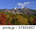 北海道 十勝岳 山の写真 37804867