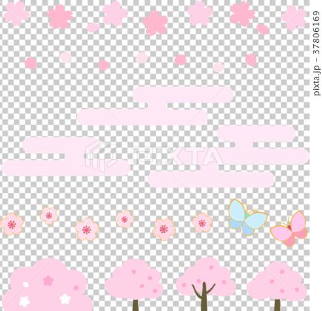櫻花 櫻 賞櫻 37806169