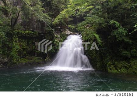 千手滝(赤目五瀑) 37810161