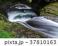 滝ヶ壺(赤目四十八滝) 37810163