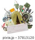 釣り フィッシング 魚採りのイラスト 37813120