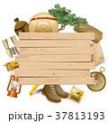 Vector Safari Concept with Yellow Plank 37813193