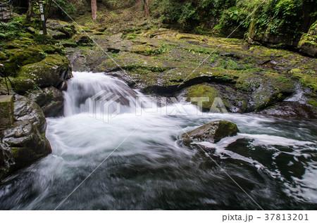 陰陽滝(赤目四十八滝) 37813201