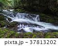 姉妹滝(赤目四十八滝) 37813202