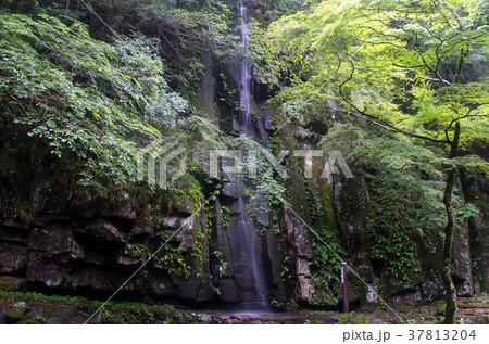 雨降滝(赤目四十八滝) 37813204