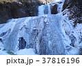 袋田の滝 滝 冬の写真 37816196