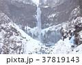 厳寒の華厳の滝 37819143