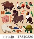 farm animals set 37830820