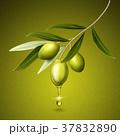 料理 おいしい 美味のイラスト 37832890