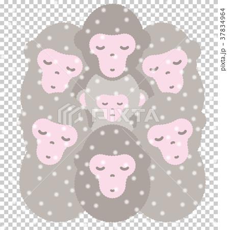 猴子餃子 37834964