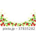 苺 果物 果実のイラスト 37835282