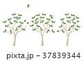 新緑と鳥_04 37839344