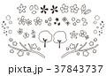 桜 春 アイコンのイラスト 37843737