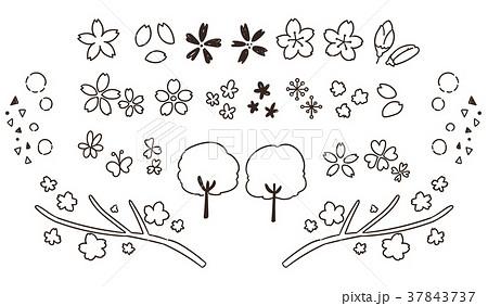 かわいい桜の手描き風アイコンセット(線画・透過) 37843737