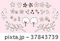 桜 春 アイコンのイラスト 37843739