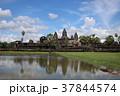 カンボジア アンコール遺跡 遺跡の写真 37844574