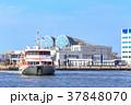 街景 豪華客船と中央ふ頭 福岡市博多区 37848070