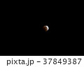【神奈川県】皆既月食 37849387