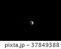 【神奈川県】皆既月食 37849388